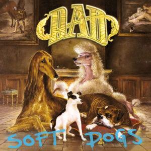 D-A-D soft dogs